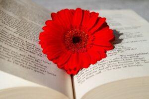 La lettura è un bene prezioso per la tua salute comecosaquando